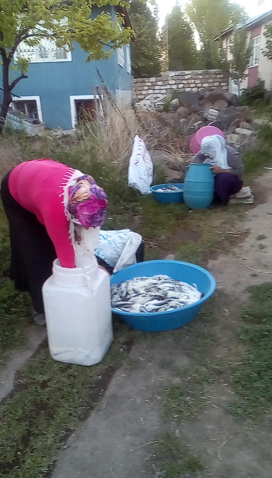 Balıkla tuzun serüveni Tuzlu balık (7).jpg