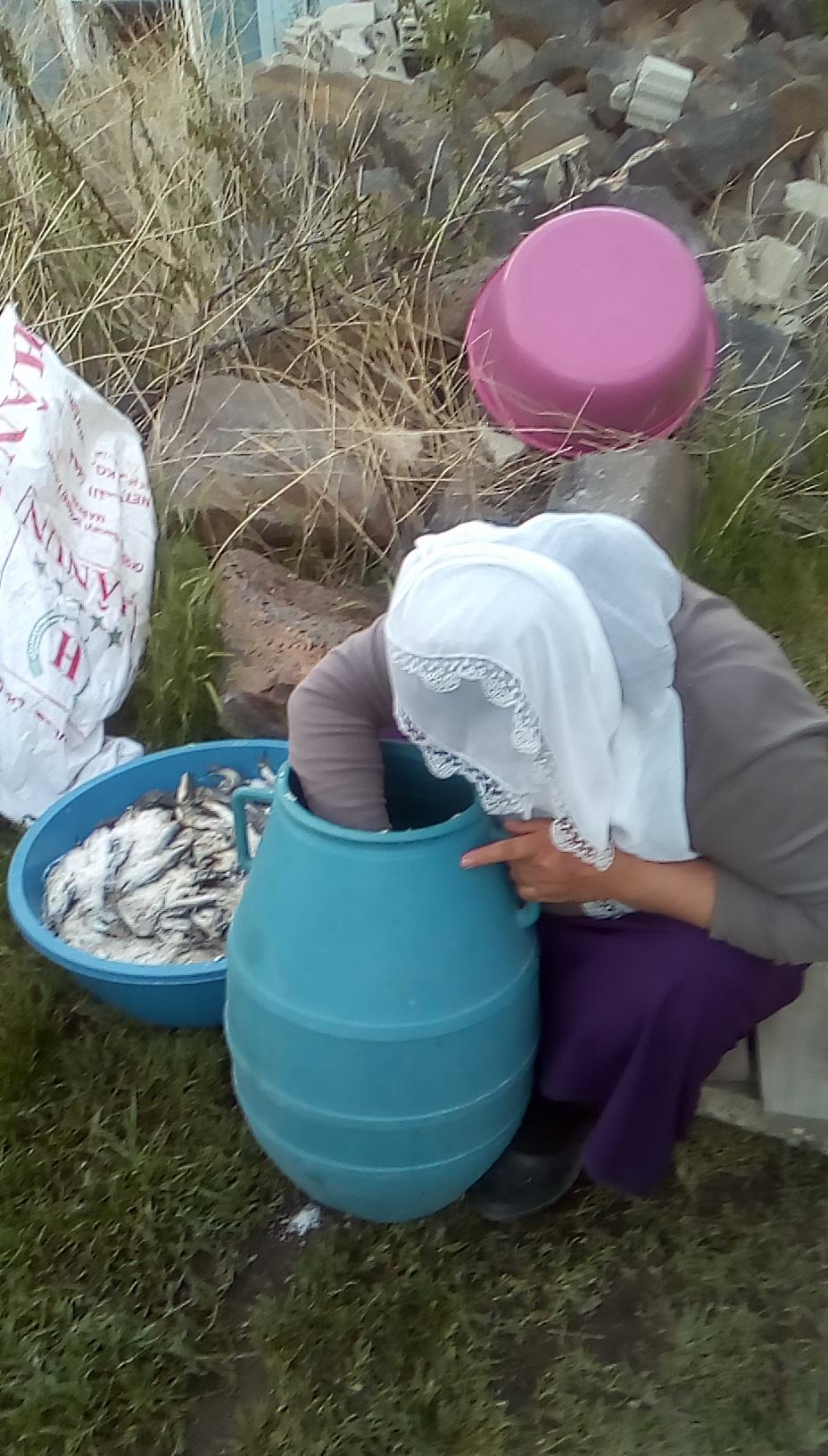 Balıkla tuzun serüveni Tuzlu balık (8).jpg