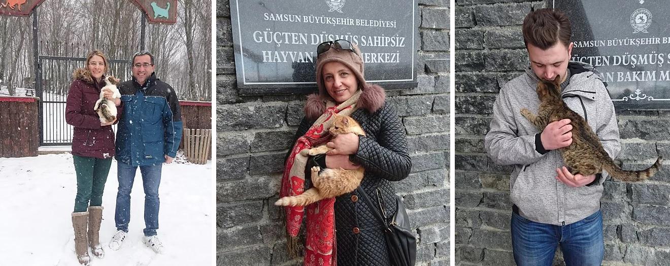 Kedi Kasabası- sahiplendirme imkanı.jpg